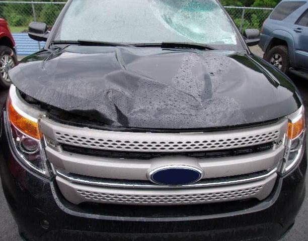 car rental collision insurance, collision insurance rental car